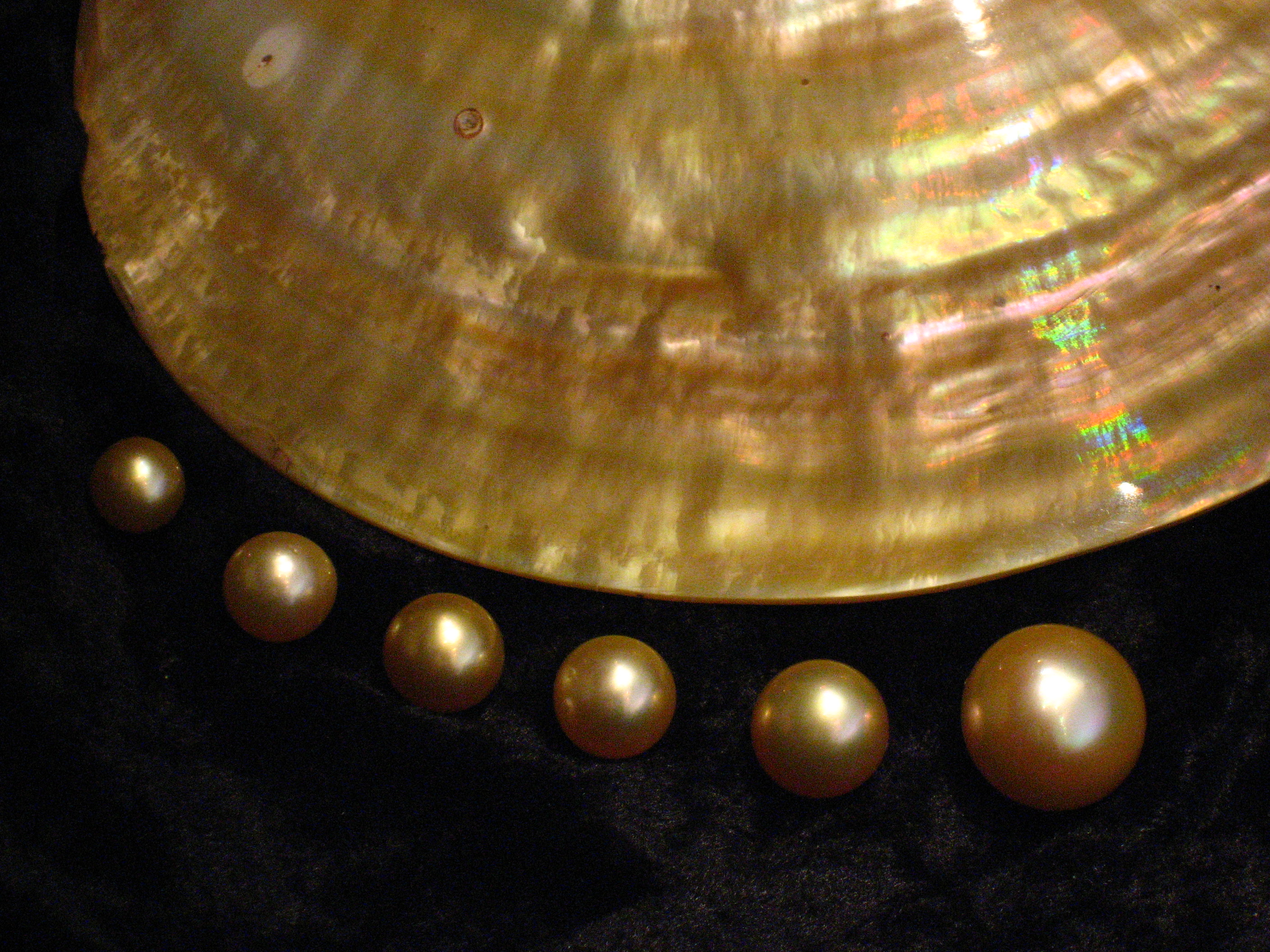 golden c pearls