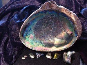 abalone pearl